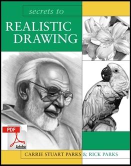 secrets to realistic drawing1 60+ LIVROS DE DESENHO GRÁTIS