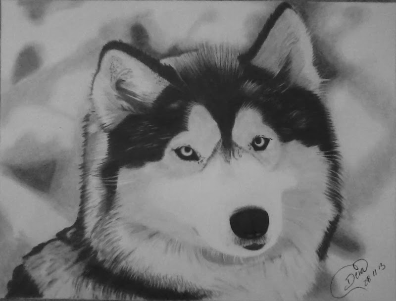 Desenhos Enviado Por Deia Palheta Cachorro Aulas De Desenho