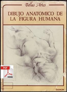DIBUJO ANATOMICO DA FIGURA HUMANA