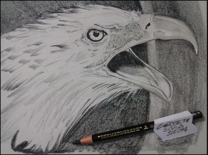 Desenho feito em 30min Lápis Dermatograph