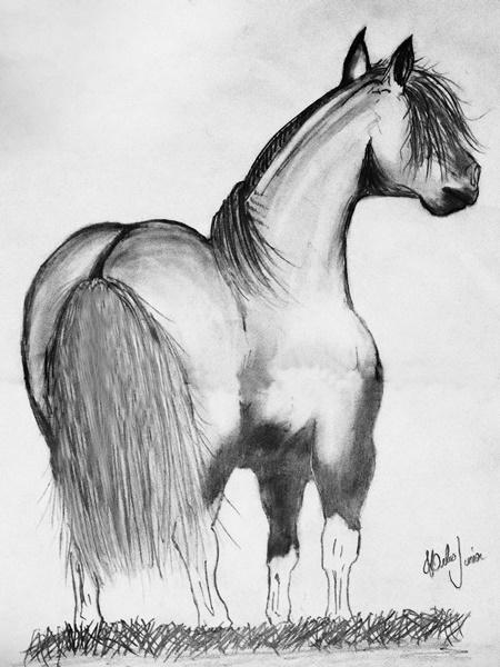 Desenho Realista de Helio Aparecido Soares Junior 1