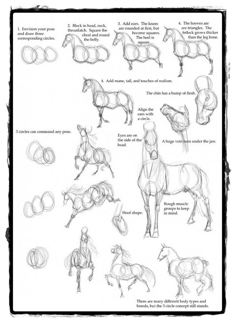 25 Belos Desenhos De Animais Para A Sua Inspiracao Como Desenhar