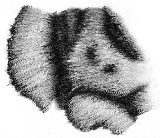 como desenhar as listras do tigre 13