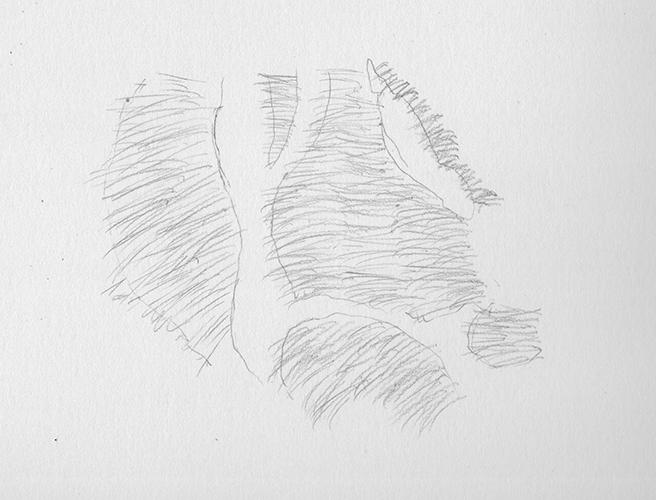 como desenhar as listras do tigre 4