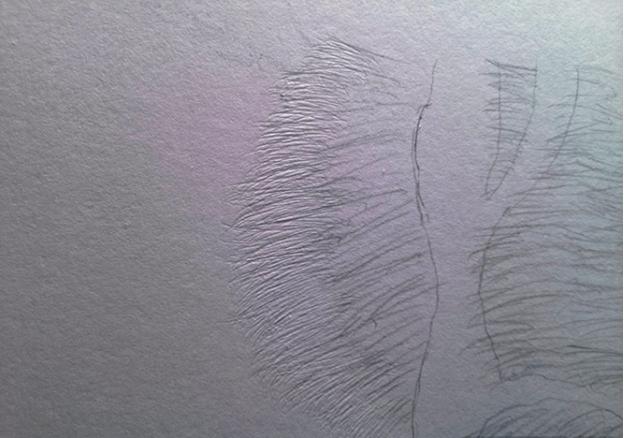 como desenhar as listras do tigre 6