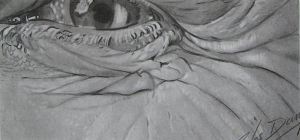 olho realista