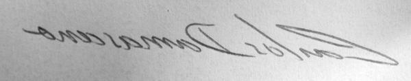 assinatura-carlos-damasceno-espelho