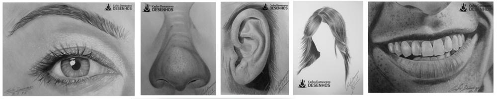 partes-do-rosto-desenho-realista-de-retratos-a-lapis-por-carlos-damasceno