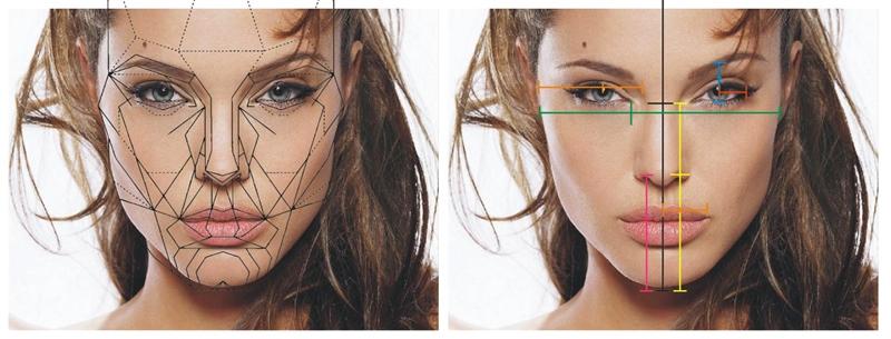 Desenho Realista - proporções do rosto - proporção aurea