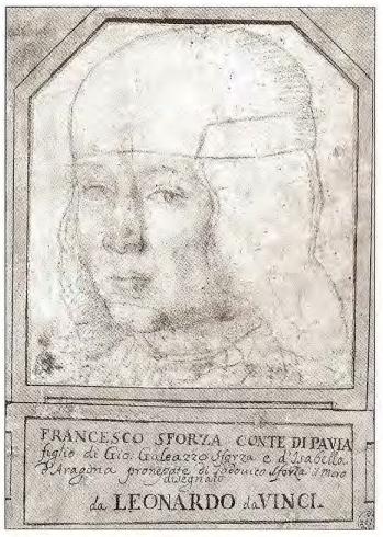 Estudo do rosto de Francesco Sforza.