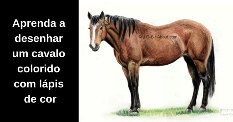 Como Desenhar Um Cavalo Com Lapis De Cor