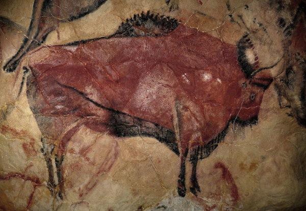 Bison. Caverna de Altamira no norte da Espanha
