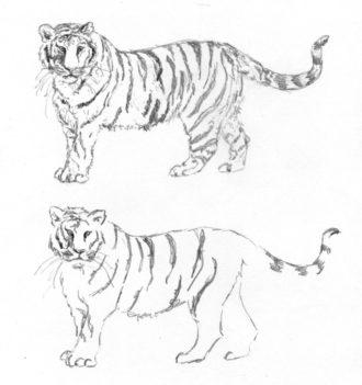 Desenho de Tigre com Detalhes