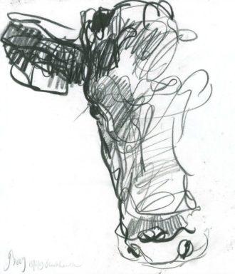Desenho simplificado de Vaca por Jason Gathorne Hardy