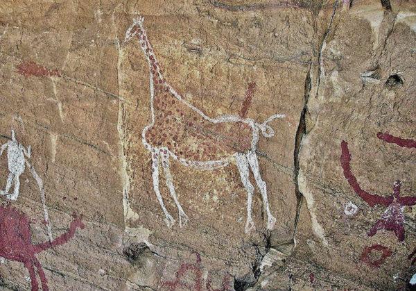 Girafa. Montanhas Tadrart Acacus na Líbia