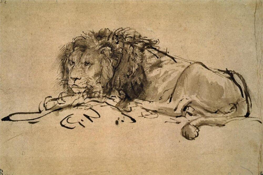 Rembrandt, esboço de um leão. Tinta no papel