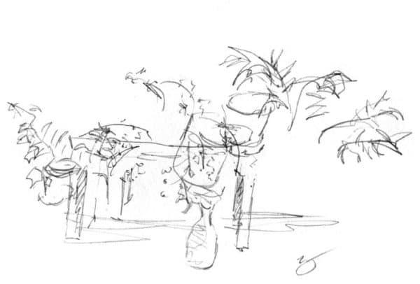 uma mesa com plantas como parte de um exercício de desenhos