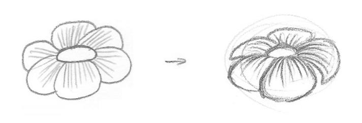 Lição 3 Indo do 2D para o 3D - USANDO LINHAS DE CONTORNO - flor